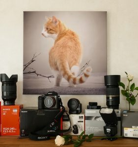 photography equipment photo 281x300 - The Things a Photography Business Plan Should Include - Tips and Tricks to Starting a Photography Business